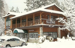 Bass Lake Realty Inc in the Winter Snow
