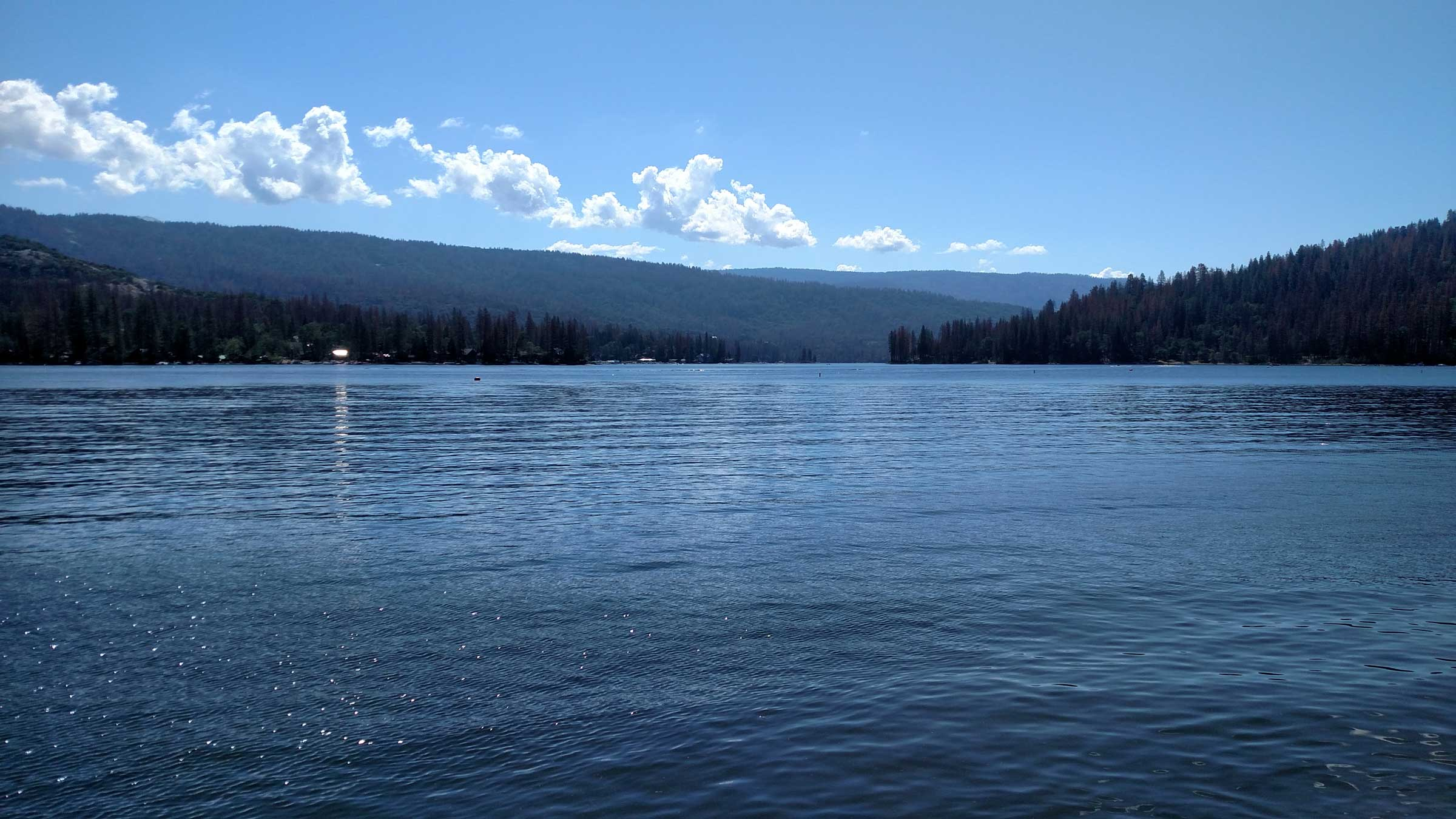 bass lake Fishing opportunities include largemouth bass, yellow perch, black crappie, and pumpkinseed sunfish bass lake has a primitive wdfw boat ramp on the east shore, just off highway sr-169.