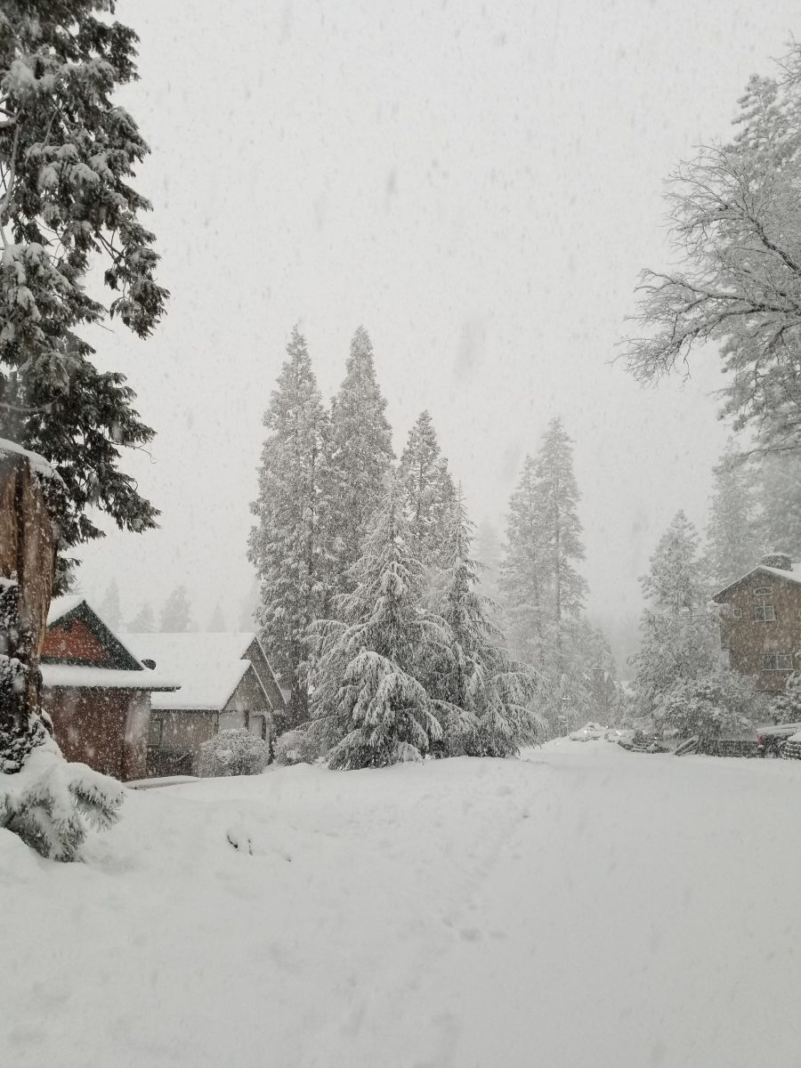 Bass Lake in the Snow JPG Image Yosemite Bass Lake News March 2021